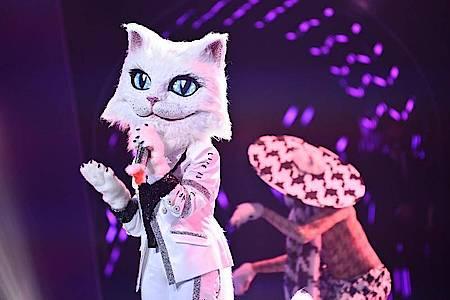 Die Figur «Die Katze» in der ProSieben-Show «The Masked Singer». Foto: Willi Weber/ProSieben/dpa