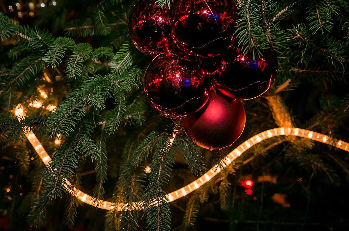 Weihnachtskugel_Tanne