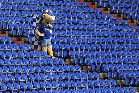 Auch Schalkes Maskottchen Erwin wirkte nach dem Schlusspfiff frustriert. Foto: Leon Kuegeler/Reuters/Pool/dpa