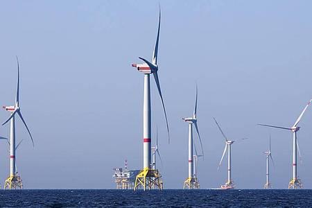 Windräder des Windparks Iberdrola «Wikinger» in der Ostsee vor Rügen. Foto: Bernd Wüstneck/dpa-Zentralbild/dpa