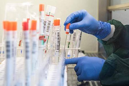 Sondersendungen zum Coronavirus bescheren den öffentlich-rechtlichen Sendern gute Quoten. Foto: Daniel Bockwoldt/dpa