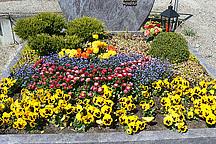 Grab mit verschiedenen Blumen