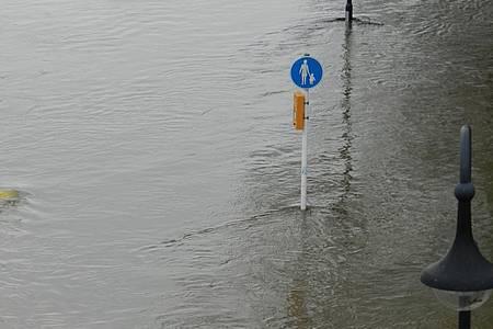 Weser Hochwasser Anzeige
