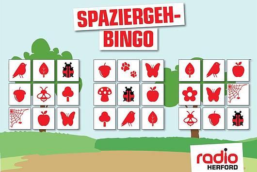 Spaziergeh-Bingo Radio Herford